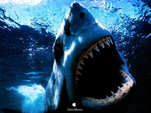 Great white shark Powerbook Ad